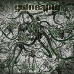 Guineapig - Bacteria - LP