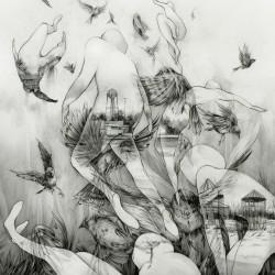 Mono - The Last Dawn - LP