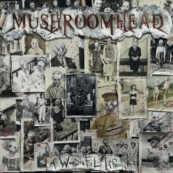 Mushroomhead - A Wonderful Life - CD DIGIPAK