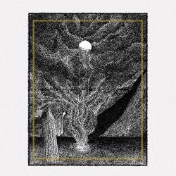 Pilori - A Nos Morts - LP COLOURED