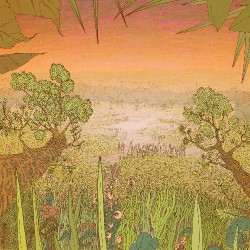 Pine Barons - Mirage On The Meadow - LP