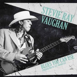 Stevie Ray Vaughan - Blues You Can Use Philadelphia PA 1987 Broadcast - DOUBLE LP Gatefold