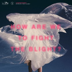 The Shaking Sensations - How Are We To Fight The Blight? - DOUBLE LP