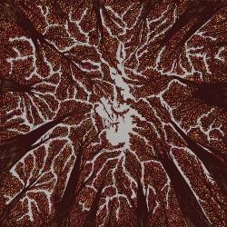 Trash Boat - Crown Shyness - CD DIGISLEEVE