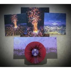 Various Artists - Desert Dances & Serpent Sermons - LP